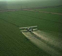Monsanto's New 'Agent Orange' - Are You Eating, Breathing & Drinking It? | YOUR FOOD, YOUR ENVIRONMENT, YOUR HEALTH: #Biotech #GMOs #Pesticides #Chemicals #FactoryFarms #CAFOs #BigFood | Scoop.it