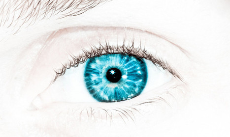 This is how the world might look with a bionic eye - Futurity | Cyborg Lives | Scoop.it