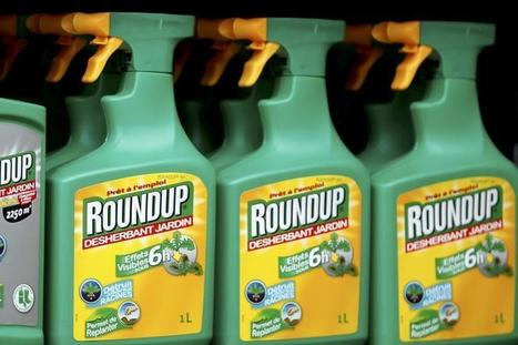 Exclusive: WHO cancer agency asked experts to withhold weedkiller documents | Sustain Our Earth | Scoop.it