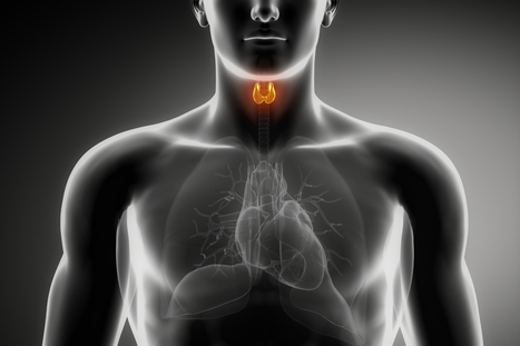 7 Things the Thyroid Docs Never Tell You. | Fitness and nutrition | Scoop.it