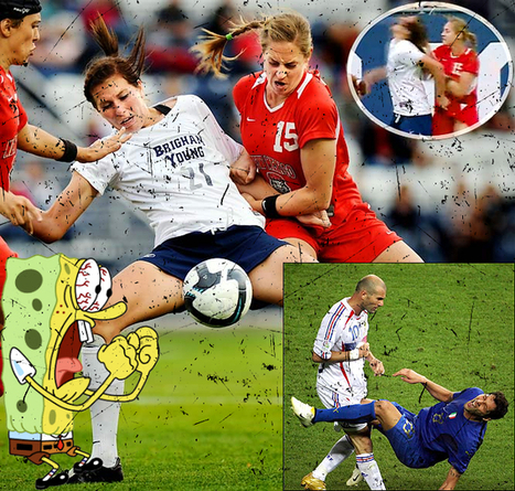 Aggression in Sport: The Nature of The Beast? | Scholarship PE - Violence in sport | Scoop.it