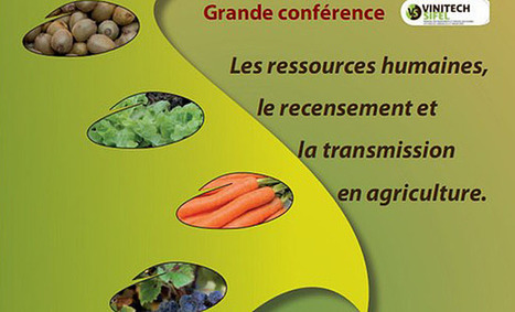 Focus pratique sur la transmission en agriculture lors de Vinitech-Sifel 2012 - Aqui.fr | Agriculture en Gironde | Scoop.it