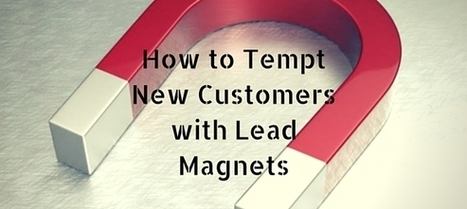 How to Tempt New Customers with Lead Magnets   The Twinkie Awards   Scoop.it