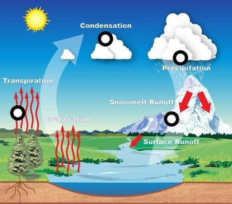 Water Cycle Yr 9 Science. by Julian  Adamson | 9 Science | Scoop.it