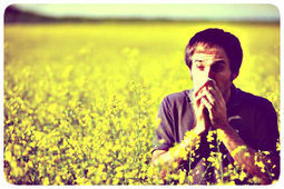 Mistakes Not to Make when Dealing with Allergies | Mistakes Not to Make when Dealing with Allergies | Scoop.it