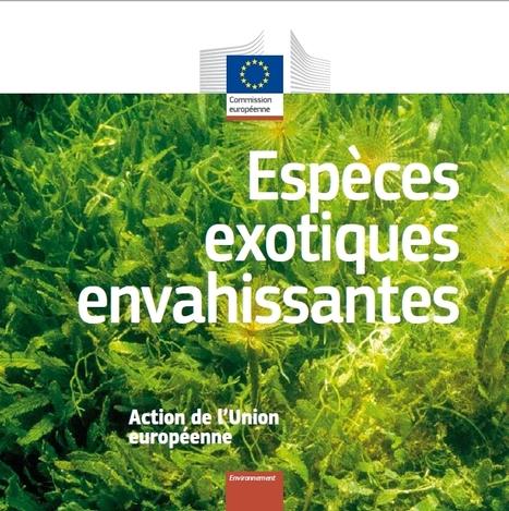 Biodiversité : L'UE publie une liste de 37 espèces invasives | EntomoNews | Scoop.it