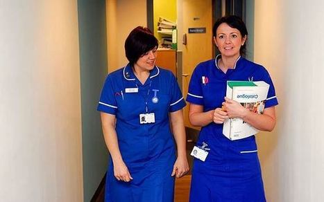 Hospital pays £1,800 a day for a nurse in NHS staff crisis   The Indigenous Uprising of the British Isles   Scoop.it