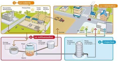 Vos déchets, une source d'énergie | Biomasse et Energies Renouvelables | Scoop.it