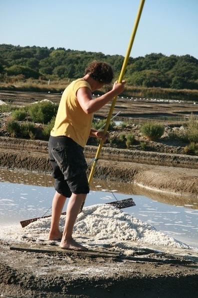 Un bien commun sauvé du béton et créateur d'emplois : les marais salants de Guérande | Innovation sociale | Scoop.it