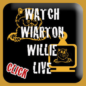 Wiarton Willie Live - Webcam - Countdown to Groundhog Day | Groundhog Day | Scoop.it