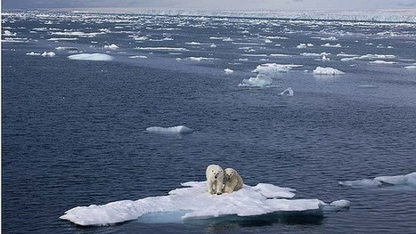 Thawing Arctic throwing climate out of kilter | Sustain Our Earth | Scoop.it