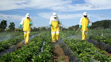 3 000 agriculteurs français déclarent la guerre aux pesticides ! Voici leur plan de bataille. | Attitude BIO | Scoop.it