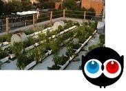 Les mauvaises herbes - Ulule | biodiversité en milieu urbain | Scoop.it