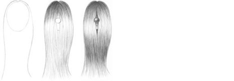 Long Straight Hair Drawing Tutorial | beautiful photo | Scoop.it