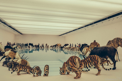 Falling Back to Earth | Fuji X-pro1 | Cai Guo-Qiang | Digital with Style | Scoop.it
