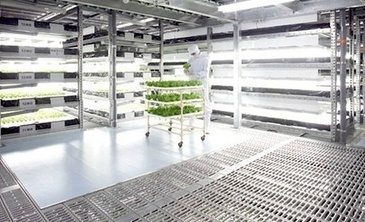 New Scientist: Vertical farms sprouting all over the world — City ... | Cityfarming, Vertical Farming | Scoop.it