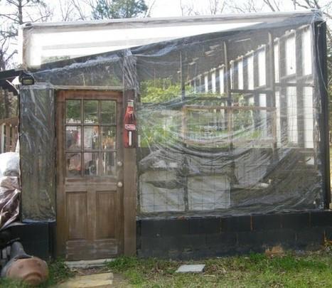 Sunday Morning Garden Chat: Aquaponics » Balloon Juice | garden farm | Scoop.it