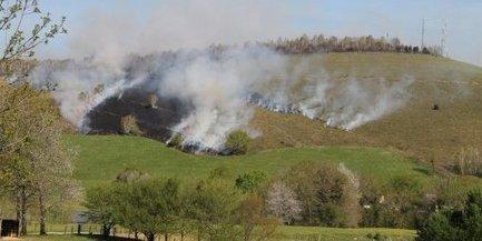 La saison des écobuages a commencé | Agriculture en Pyrénées-Atlantiques | Scoop.it