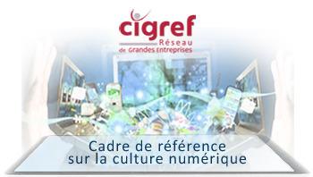 Cadre de référence CIGREF sur la culture numérique | Extra Pedagogy | Scoop.it