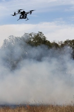 Science fights bushfires on a multitude of fronts - The Age | Fire prevention with grasses | Scoop.it
