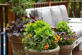13 Quick-Change Boosts for a Spring Patio | Exterior spaces | Scoop.it