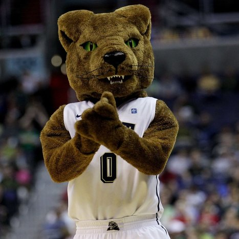Ranking the 20 Best Mascots in College Basketball - Bleacher Report | Best Mascots | Scoop.it