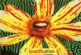 tarot40_bg.jpg (326x223 pixels) | Botany Whimsy | Scoop.it