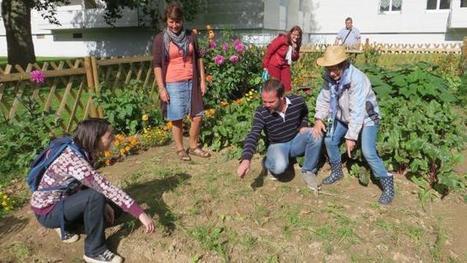 Claires-Fontaines. Le jardin partagé rapproche les habitants | (Culture)s (Urbaine)s | Scoop.it