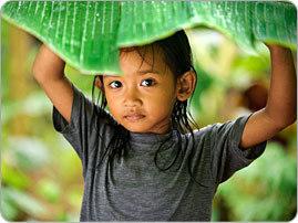 Réchauffement climatique : les enfants très exposés aux maladies | EntomoNews | Scoop.it