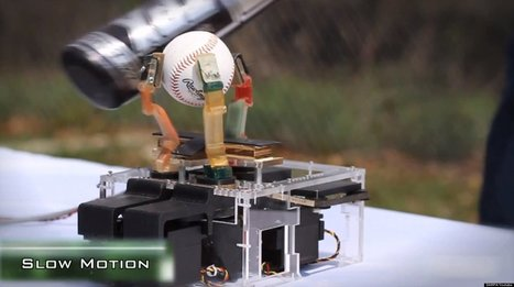 WATCH: Whack From Baseball Bat Can't Hurt New Robotic Hand | 21st Century Innovative Technologies and Developments as also discoveries, curiosity ( insolite)... | Scoop.it