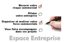 www.dechavanneconsultants.com | FORMATION DES COMMERCIAUX : comment développer ses ventes ? | Scoop.it