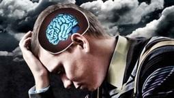 El estrés y la depresión menguan el cerebro | Madres de Día Pamplona | Scoop.it