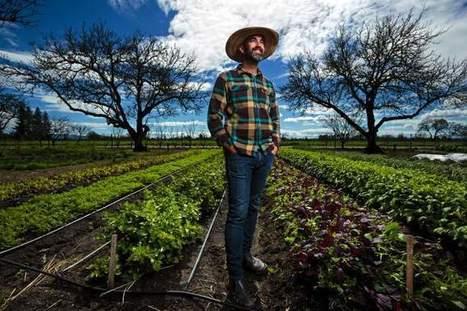 Meet Healdsburg's culinary gardener-turned-Instagram celebrity - Santa Rosa Press Democrat | Wine Geographic | Scoop.it