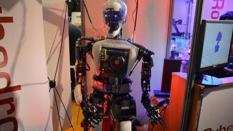 Insolite. Un robot humanoïde au baptême de Méline, en Vendée | Une nouvelle civilisation de Robots | Scoop.it
