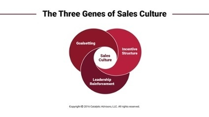 How Safe is Your Sales Culture from 'Going Wells Fargo?'   Sales Leadership News   Scoop.it