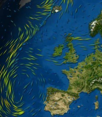 MeteoEarth - website en apps voor het weer in de klas | aardrijkskunde | Scoop.it