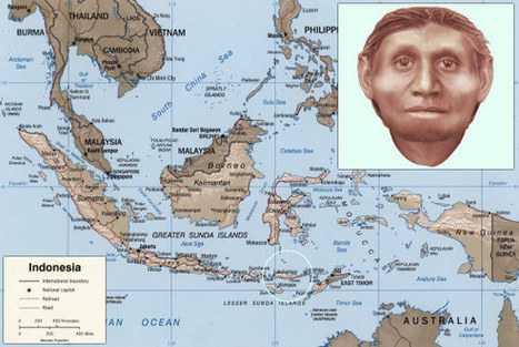 Homo floresiensis Distinct Human Species, Says New Research - Sci-News.com | Archaeology | Scoop.it