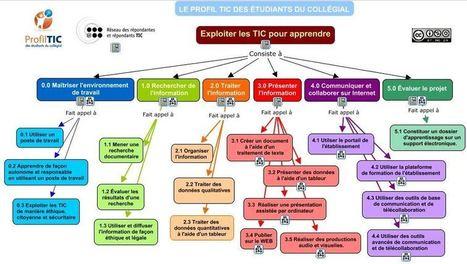 Contribuer au développement des habiletés technologiques et informationnelles des étudiants: Carte conceptuelle | Proyecto  final integrador | Scoop.it