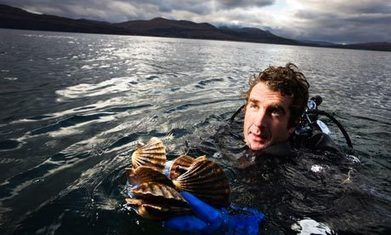 War on the seabed: the shellfishing battle | Geography in the classroom | Scoop.it