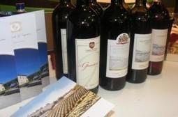 Al Vinitaly importanti riconoscimenti per il Montecucco. | ItalyFood24 | Scoop.it