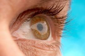 FDA approves first retinal implant to restore partial vision to the blind - Fox News | Health around the clock | Scoop.it