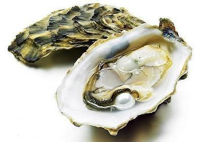 Songwriting Tips: Oysters and Muses | PRODUCTION of Video Music clips and songs | Scoop.it