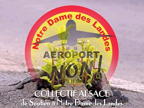 Communiqué: De Notre-Dame-des-Landes à l'Alsace : une poignée d'irréductibles milite ! | #NDDL | #ZAD Partout | #GPII | Scoop.it