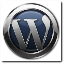 WordPress Plugins That You Should Always Install On A MMO Blog   Pure Leverage Helps You Perform!   Small Business Success   Scoop.it