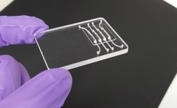 Penn Engineers Develop $2 Portable Zika Test | Jeff Morris | Scoop.it