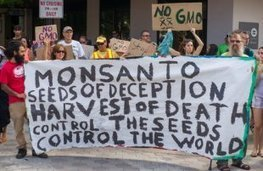 With Help From ALEC and Bayer, Monsanto Is Poised to Take Over the Global Food System | Organic Farming | Scoop.it