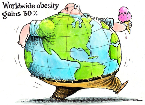 The Cause of Obesity   Health Advice   Scoop.it