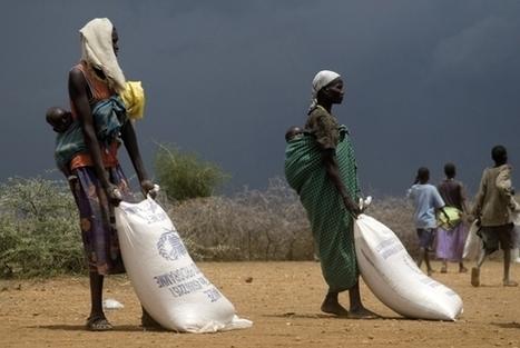 Les enjeux de l'agriculture mondiale | Questions de développement ... | Scoop.it
