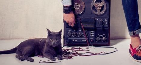 Tous « consauditeurs » ou quand la musique révolutionne la lecture des marques | Digital news | Scoop.it