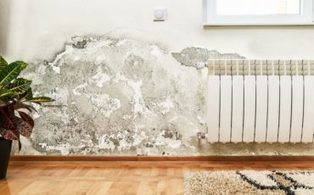 Chi mi paga se dal muro esterno viene umidità nell'appartamento? | Media | Scoop.it